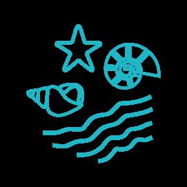 Icône plage, vague, étoile de mer et coquillages pour Rayonner est simple, léger et vibrant